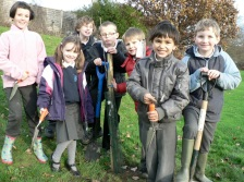 Planting apple trees