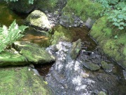 Nice stream